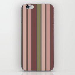 Colorful Stripes 2 iPhone Skin