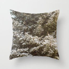 This Winter Throw Pillow