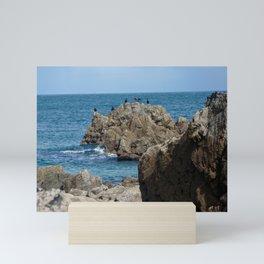 Cornish Cormorants Mini Art Print