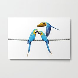 macaw Bird sitting on rope & flying Metal Print