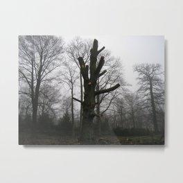 unarmed tree. Metal Print
