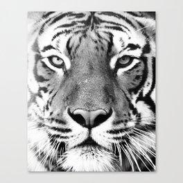Tiger, Animal, Scandinavian, Minimal, Trendy decor, Interior, Wall art Art Canvas Print
