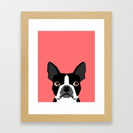 Kennedy - Boston Terrier cute dog themed gifts for small dog owners and Boston Terrier gifts  Framed Art Print