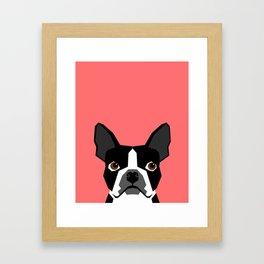 Kennedy - Boston Terrier cute dog themed gifts for small dog owners and Boston Terrier gifts  Framed Art Print