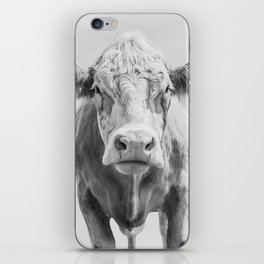Animal Photography | Cow Portrait Minimalism | Farm animals | black and white iPhone Skin