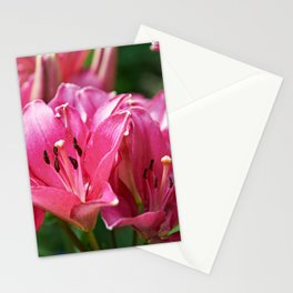 Beautiful flowers lilly Stationery Cards