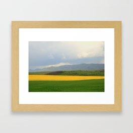 Colza 4 Framed Art Print
