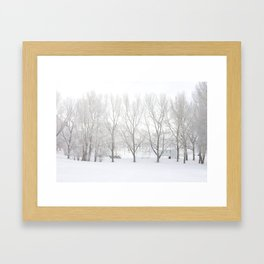 Winter in Confederation Park Framed Art Print