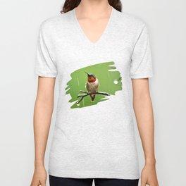 Hummingbird XIII Unisex V-Neck