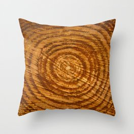 The Rings of Time Throw Pillow