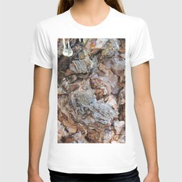 TEXTURES: Weeping Big Cone Pine Bark T-shirt
