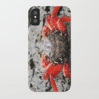 crab iPhone & iPod Cases featuring Crab by Cassidy Marshall