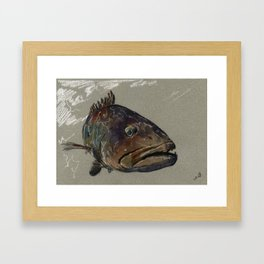 Great grouper fish Framed Art Print