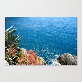 Cinque Terra, Italy Canvas Print