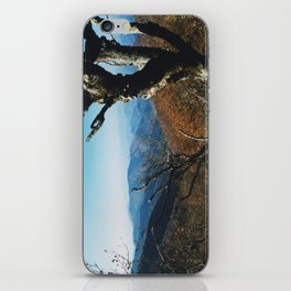 View from the Craggies iPhone Skin