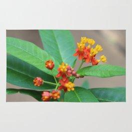 Vibrant Flowers Rug