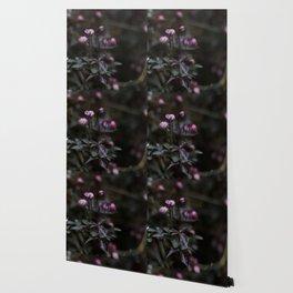 Returning Spring III Wallpaper