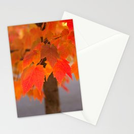 Autumnal Epitome Stationery Cards