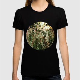 Flowers in the sun T-shirt