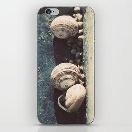 Snail family iPhone Skin