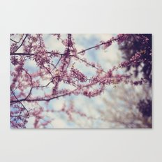 Niagara Blossoms Canvas Print