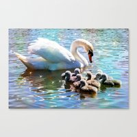 aelwen Canvas Prints featuring CYG-NIFICANT by Catspaws