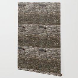 Acacia bark II Wallpaper