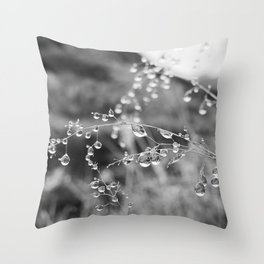 Exmoor XII Throw Pillow