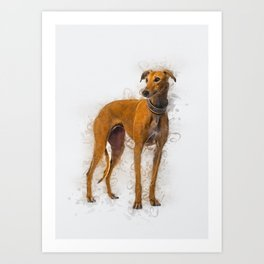 Greyhound Art Art Print