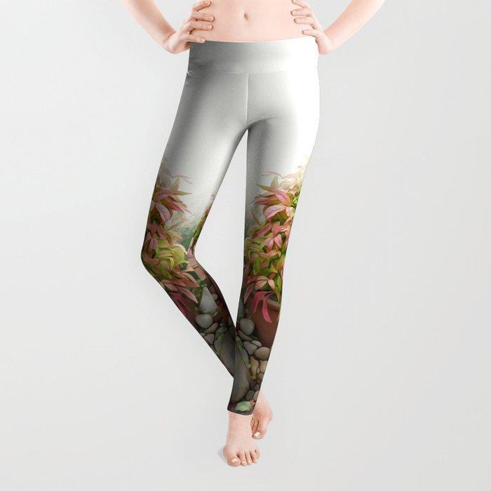 Leaves and Dew Leggings