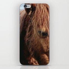 Brooding Pony iPhone Skin