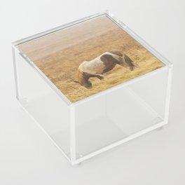 Runaway Acrylic Box