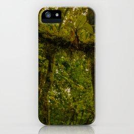 Tenorio Rainforest iPhone Case