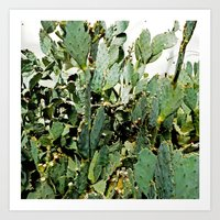 cacti Art Prints featuring Cacti by PoseManikin