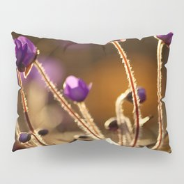 Hepaticas in The Glare Of The Sun #decor #society6 Pillow Sham