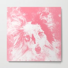 border collie dog 5 portrait wspw Metal Print