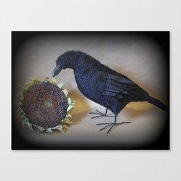 Corvid the Crow Canvas Print