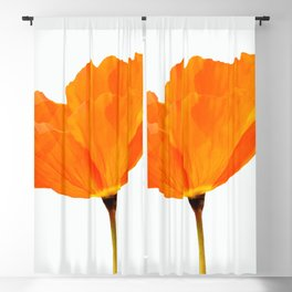 One And Only - Orange Poppy White Background #decor #society6#buyart Blackout Curtain