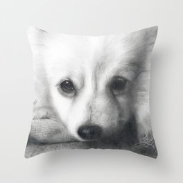 Rufus- My Love And Light.  2003-2018 Throw Pillow