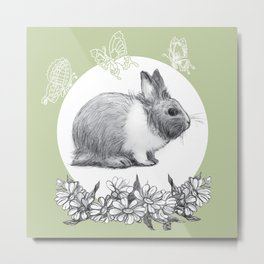 Rabbit fluffy gray on a green background Metal Print