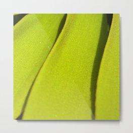 Vegetal lines Metal Print