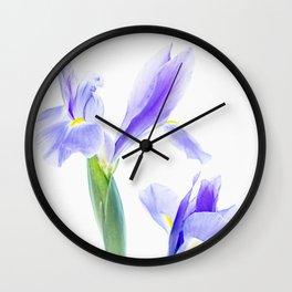 Translucent Iris Wall Clock