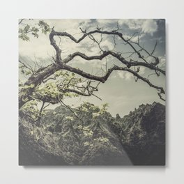 Tree in the mountains Metal Print