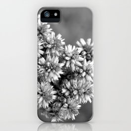 Black and White Floral Tiny Cobwebs on Flowers - Macro Close Up iPhone Case