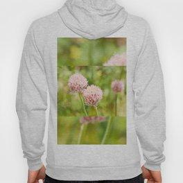 Pink chives flowering plant Hoody