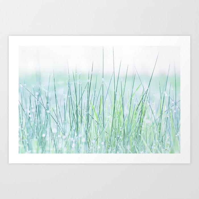 Field of grass in a fresh spring morning Kunstdrucke