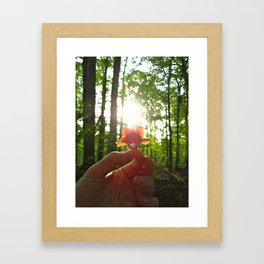Nature Rays Framed Art Print