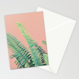 Ferns on Blush Stationery Cards