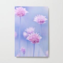 Allium pink macro 087 Metal Print