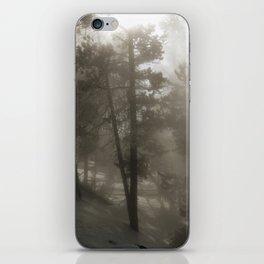 Sunlight and Fog Through Trees iPhone Skin